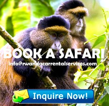 book-rwanda-safari